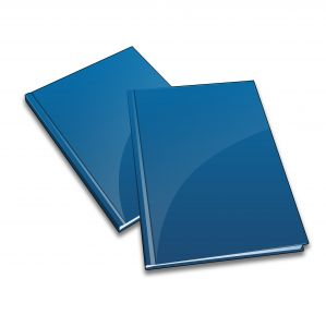 2 Annual Reports  4