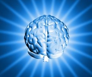 Shiny Brain